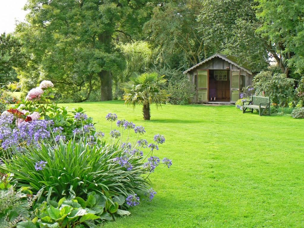 Cos'è un aspiratore di foglie e perché è fondamentale nella cura del giardino